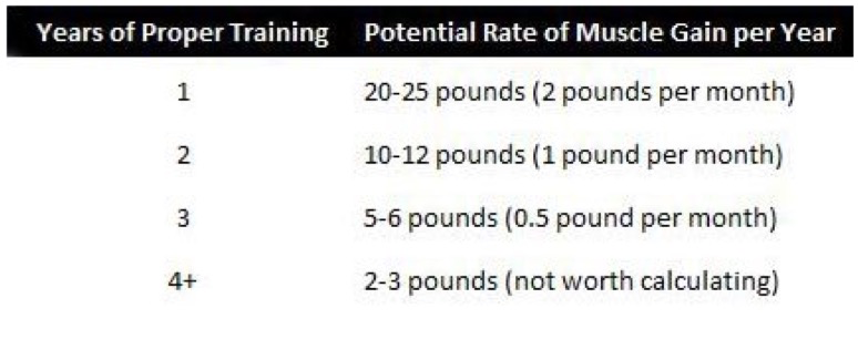 Alan Aragon's potential rate of muscle gain per year, reproduced from Eric Helms London presentation 2012