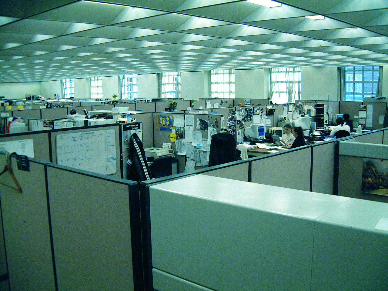 office-with-cubicles